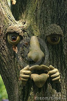 A fake face on a tree , Garden Deco, Garden Art, Fairy Doors On Trees, Tree People, Tree Faces, Outdoor Trees, Landscaping Near Me, Antler Art, Unique Trees