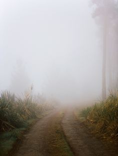 The chosen path.