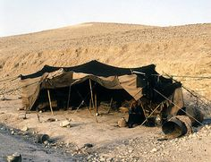 Israel,  Bedouin woman outside her tent in the Judean Hills between Jerusalem and Jericho
