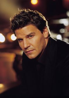 David Boreanaz - Angel.Love watching Angel .Please check out my website thanks. www.photopix.co.nz