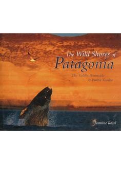 Patagonia, on the southern tip of South America, is one of the world's greatest wildlife habitats and this book illustrates just that. It's a window on the life-and-death struggles of the wild animals that live there, including photographs of killer whales, elephant seals, penguins and albatrosses. By Jasmine Rossi printed in Italy. Wild Shores: Patagonia  Home & Gifts - Gifts - Books Boston, Massachusetts