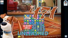 Pets Unleashed - Level 171 (1080p/60fps)