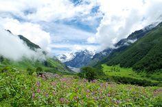 Un valle con millones de flores entre nubes y picos nevados (al pie del Himalaya, en India)