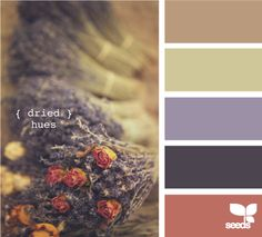 dried hues--this site gives you ideas for complimentary colors.