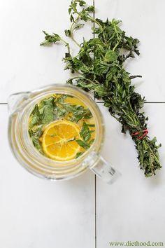 Citrus Mint Spritzer   www.diethood.com   #summer #drinks #spritzer #recipe