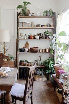 :: cute shelving idea for the kitchen ::
