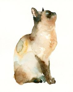 Watercolour Cat - I like this because of how the paint has been blended in to show tone effectively
