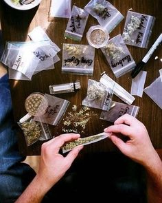 Buy top quality Cannabis Seeds from Seedsman. Our range of marijuana seeds is one of the largest online, with more than 3000 varieties of Cannabis Seeds. Marijuana Art, Marijuana Plants, Cannabis Oil, Medical Marijuana, Weed Hoodies, Fille Gangsta, Whatsapp Text, Weed Art, Stoner Girl