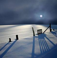 Moonlight on the snow/Germany Veronika Pinke Photography Moon Shadow, Winter Magic, Winter Snow, Winter Night, Snow Night, Foto Fun, I Love Snow, Winter Scenery, Snow And Ice