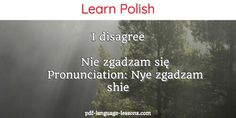 Learn the best ways to say NO in Polish. Includes audio lesson and explanations. This lesson is for Beginners. Learn Polish, Ways To Say Said, Fall In Line, Polish Language, Language Lessons, Second Language, Nye, Poland, Audio