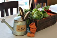 great display veggies in basket with mini watering can