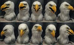 Loved making this head redo of my old bald eagle mask all new! new base shape specially sculpt to a bald eagle. Eagle Mask, Eagle Head, Bald Eagle, Fursuit Head, Bird Costume, Eagle Feathers, Adobe Photoshop Elements, Dragon Art, Fur Babies