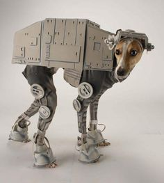 Check out Bones Mello, the AT-AT Dog! This amazing costume was designed by Laika House artist Katie Mello for her dog Bones.