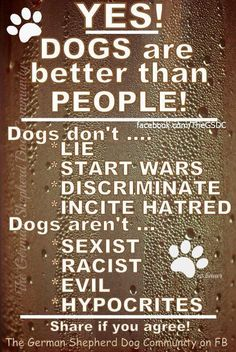 Dogs are better than people...