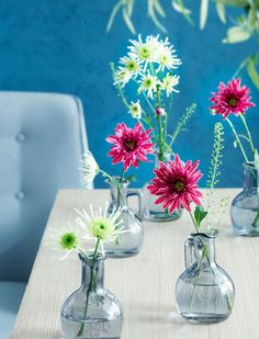 Bloementrend   Zomerse kleurige bloemen  Stek Magazine Portable Greenhouse, Small Greenhouse, Ice Crystals, Chrysanthemum, Bed Design, Glass Vase, Valentines, Pure Products, Flowers