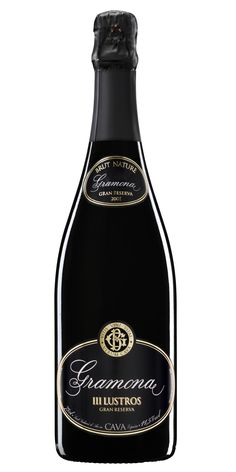 This is one of Spain's top cavas from Gramona....III Lustros.  Cava is not champagne but Gramona's cavas can easily compete with many champagnes.  III Lustros is amazing value at about 23 euros. or 45$.  I'll take it over a basic champagne at the same price any day!