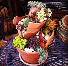 A new trend in gardening has gardeners creating all sorts of creative garden arrangements and fairy gardens out of broken pots, proving that even a broken pot can be useful and beautiful. They're small, so they give people with limited space and green thumbs a great opportunity to do some gardening. They also let people express their creative side and recycle any broken pots they have lying around