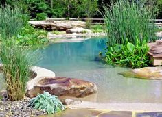 "This is so beautiful, I think it qualifies as ""pool art"".   Natural Swimming Pools Don't Need No Chemicals via @PureWow"