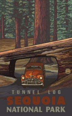 Sequoia National Park Tunnel Log vintage poster