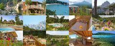 Am Fluss SOLENZARA  Ostküste Fair Grounds, Travel, Corse, River, Voyage, Viajes, Traveling, Trips, Tourism