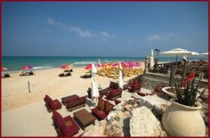 We manage your details in Israel so you don't have to. Find us at- http://www.goldcarpet.co.il/