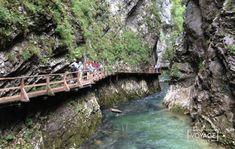Voilà un pays étonnant ! Méconnu des touristes et pourtant proche de chez nous, c'est une destination de vacances qui permet de profiter à la fois de la montagne et des randonnées, de villes agréables et riches culturellement comme Ljublajana, de baignades dans des lacs sublimes comme Bled... Mais aussi de goûter aux plaisirs de la vigne, et même de la côté balnéaire avec la toute jolie ville de Piran. Mais c'est Valérie qui en parle le mieux. Passionnée par les pays de l'Europe de l'est...