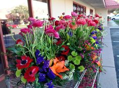 Beautiful spring colorful garden arrangements.  Bright, fresh looking, and all different.  Just like my brides!