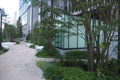 開業後の大手町フィナンシャルシティGQ:日比谷通り沿いと大手町川端緑道 PART2 - 緑には、東京しかない