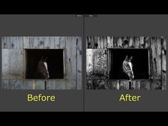 ▶ Learn Lightroom 5 - Part 16: Create a Dramatic B&W Image (Training Tutorial) - YouTube