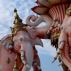 elephant essay orwell