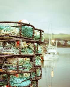 the Dungeness crab traps are ready in bodega bay
