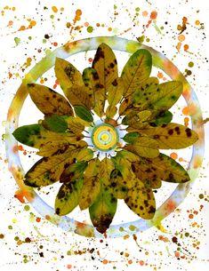 activitate cu frunze mandală din frunze Photo Art, Diy And Crafts, Plant Leaves, Dots, Texture, Circles, Plants, Patterns, Decor