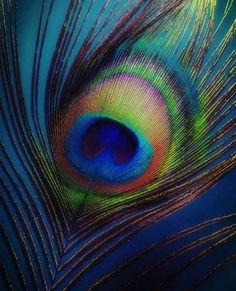 🌻 Jai Shri Radhe Krishna 🙏 🌻 Watch out Mahabharat and Ramayan All Episode Ramayan:… Lord Krishna Wallpapers, Radha Krishna Wallpaper, Radha Krishna Images, Lord Krishna Images, Radha Krishna Photo, Krishna Pictures, Krishna Art, Radhe Krishna, Shri Hanuman
