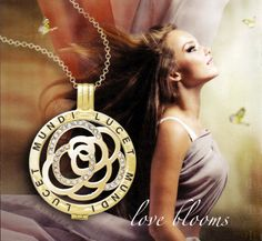 Sterling Silver and gold plate locket and coin