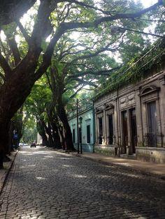 calles de San isidro (Arquitectura Argentina )