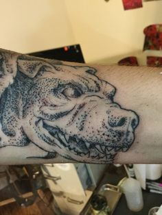 Cerberus tattoo, Greek mythology, stippling, pointillism Physical Fitness Program, Tattoo Portfolio, Cerberus, Pointillism, Stippling, Greek Mythology, Workout Programs, Skull, Tattoos