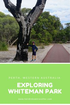 Explore Whiteman Park in Perth, Western Australia and discover a great bit of Australian bushlands. Perth Western Australia, Australia Travel, Go Outdoors, Paragliding, Rafting, Continents, Countryside, Travel Destinations, Travel Tips