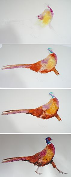 Painting a pheasant in watercolour -  http://eastwitching.com/2013/11/08/getting-ina-really-fowl-ood-for-christmas/  #pheasant #birdart #painting #watrcolor #watercolour