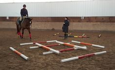 Fun With Ground Poles Clinic Shakes Up Winter Riding Routine - Carpe Diem Equestrian Training Carpe Diem, Wisconsin Winter, Horse Exercises, Training Exercises, Workout At Work, Horse Pattern, Work Horses, Riding Lessons, Equestrian Outfits