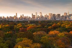 Central Park NYC in autumn