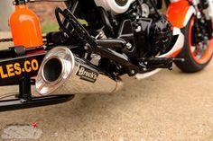 Flash   Honda Grom Honda Grom Custom, Video New, Motorcycle Gear