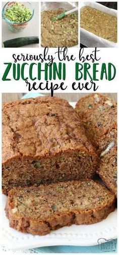 Zucchini bread recipe that truly is the best ever! Easy to make & you'll lov… Zucchini bread recipe that truly is the best ever! Easy to make & you'll love the blend of spices used. It's the perfect zucchini bread recipe! Best Zucchini Bread, Bake Zucchini, Zucchini Bread Recipes, Quick Bread Recipes, Cooking Recipes, Recipe Zucchini, Zuchinni Bread Muffins, Easy Zuchinni Bread, Banana Zuchini Bread
