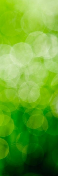Shades of green for the bridesmaid dresses! Bright Green, Go Green, Green Colors, World Of Color, Color Of Life, Bokeh, Shades Of Green, My Favorite Color, Color Inspiration