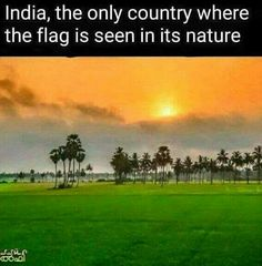 Happy Independence Day everyone. Together ne. Some Amazing Facts, Interesting Facts About World, Unbelievable Facts, General Knowledge Facts, Knowledge Quotes, Gernal Knowledge, Indian Army Quotes, India Quotes, Wow Facts
