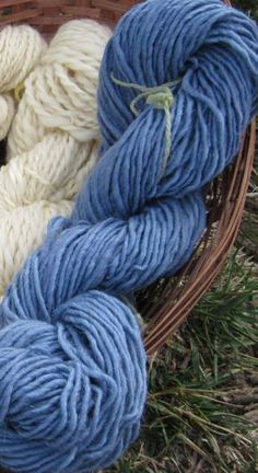 creating blue yarn from black beans