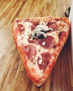 Jewels: pizza, food, home decor, bean bag, foodporn, belt, where to get this dog pillow, perfect, pillow, home accessory, dog, cool, stuff, pouf, poof, pizza pillow, couch, sofa, tumblr - Wheretoget