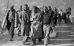 Janvier-février 1939, un demi-million de réfugiés arrivaient en France, fuyant le régime franquiste. - DDM