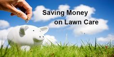 Follow these four steps to save a ton of money on your lawn care! #landscaping