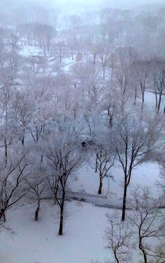 A view of snowy Central Park!