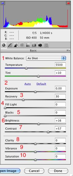 How To Edit RAW Photos in Adobe Camera Raw   image
